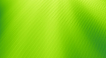 Green abstract background designs texture pattern