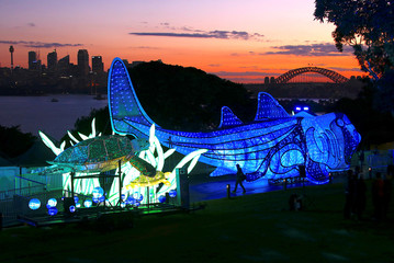 Sydney Harbour Bridge can be seen behind a visitor to a preview of Taronga Zoo's illuminated endangered animal sculptures walking past the Port Jackson shark and green turtle display at sunset in Sydney