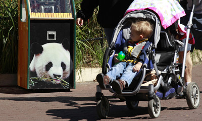 A child in a stroller passes a picture of a giant panda at the National Zoo in Washington