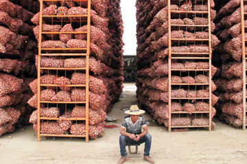 A man sits before tall stacks of garlic at a market in Jinxiang county, in eastern Shandong province