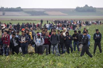 Migrants wait in field after crossing border near Tovarnik