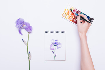 Top view of a girl draws a blue flower in a notebook with watercolors