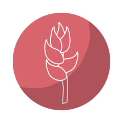 sticker beauty exotic and tropical flower branch