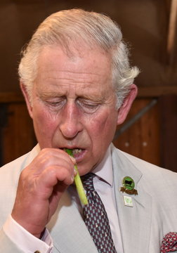 Britain's Prince Charles eats local asparagus during his visit to the Oranje Tractor Wines in Albany