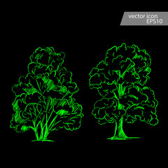 Vector set of hand drawn tree sketches. Artistic drawing.