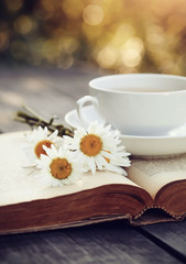 Old book and a cup with a camomiles on a wooden table.
