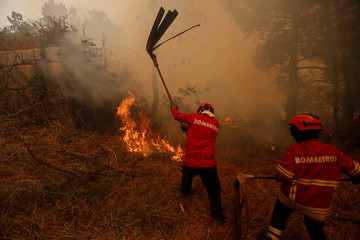 Firefighters work to combat a forest fire near Macieira