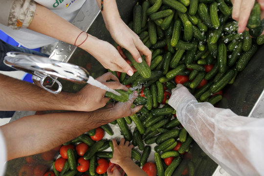 Volunteers wash vegetables to create the world's biggest vegetable salad during a Guinness World Record attempt in Pantelimon