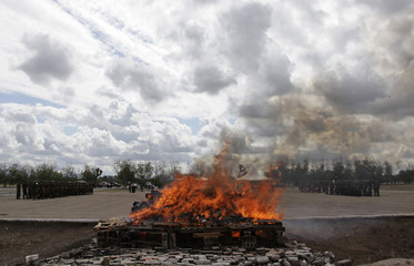 Soldiers stand in formation as a pile of marijuana and other drugs are incinerated at the 7th Military Zone on the outskirts of Monterrey