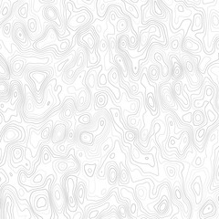 Abstract background with grey lines on a white background. Lines on a map. Monochrome image.