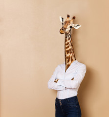 Giraffe headed woman dressed up in office style