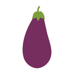 eggplant vegetable natural vector icon illustration graphic design