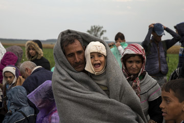 Migrants wait in field after crossing border near Tovarnik