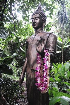 Buddha Statue Lyon Arboretum Oahu Hawaii