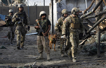 NATO and Afghan troops arrive at the site of a suicide attack in Jalalabad