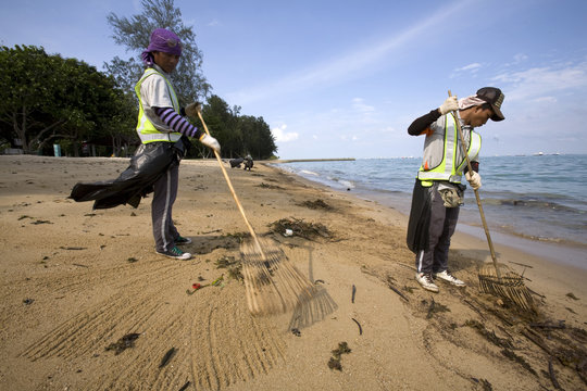 Workers clean up oil and other debris from a beach in Singapore