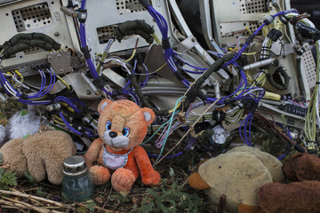 A teddy bear is placed next to wreckage at the site of the downed Malaysia Airlines flight MH17, near the village of Hrabove (Grabovo) in Donetsk region, eastern Ukraine