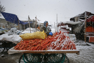Man covers himself with a woollen scarf and gloves as he arranges carrots on a push cart for sale during  snowfall along a roadside in Quetta