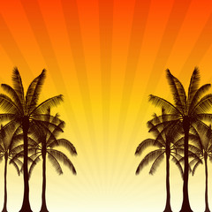 Silhouette palm tree and sunshine ray in flat icon design with vintage filter background