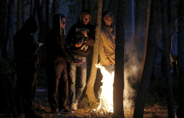 Migrants gather under trees and light a fire to keep warm, near to the Eurotunnel site in Calais