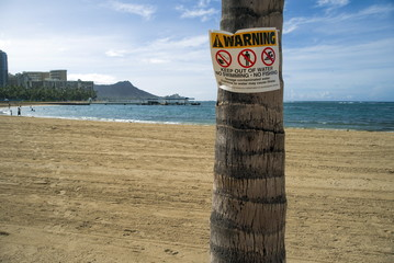 A warning sign sits on a palm tree after 500,000 gallons of raw sewage streamed onto the famed Waikiki Beach in  Honolulu, Hawaii