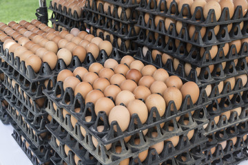 Eggs from chicken farm in the market.