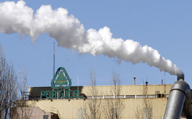 Smoke is emitted at the paper and pulp factory of Portucel in Mitrena