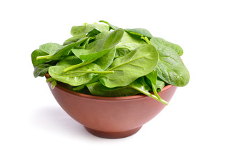 Fresh bunch of spinach in the bowl.