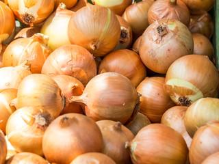 Zwiebeln auf dem Markt