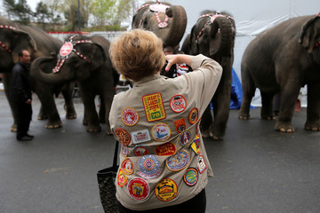 Circus fan Katie Harmke of Selbyville, Delaware photographs the performing elephants before the matinee on the final day of shows in the Ringling Bros and Barnum & Bailey Circus at the Mohegan Sun Arena at Casey Plaza in Wilkes-Barre, Pennsylvania, U.S.