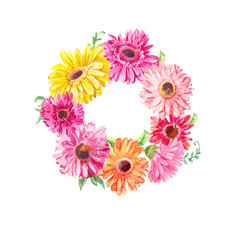 Wreath of pink gerberas or chamomiles isolated on white. Watercolor illustration
