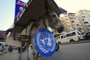 A man tours with a donkey wearing a U.N. sign, to express opposition to the international Special Tribunal for Lebanon, in Beirut
