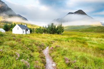 Wall Mural - The Scottish Highlands