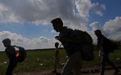Migrants walk through on a road after crossing into the country from Serbia at the border near Roszke