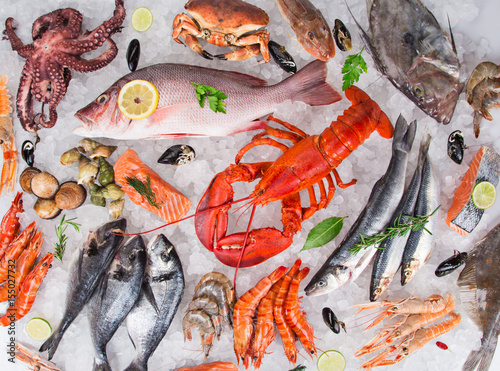 Wall mural Fresh tasty seafood served on crushed ice.