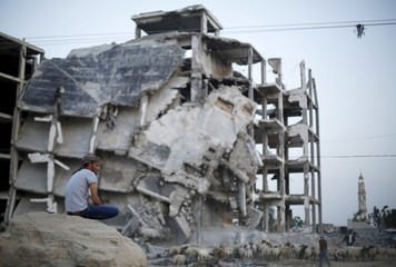 Palestinian shepherd herds livestock as man sits near residential buildings, that witnesses said were heavily damaged by Israeli shelling during a 50-day war last summer, in Beit Lahiya town in the northern Gaza Strip