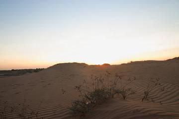 Dramatic sunrise view of muine  Desert in the vietnam.