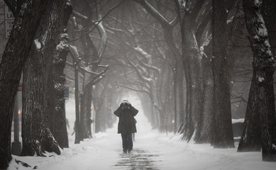 A man walks up 5th Avenue at Central Park as it snows in New York