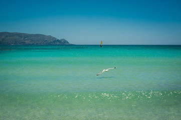 Windsurfer on the turquoise water, Elafonisi pink beach Greece, Crete