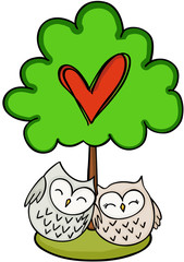 Love green tree with couple owls