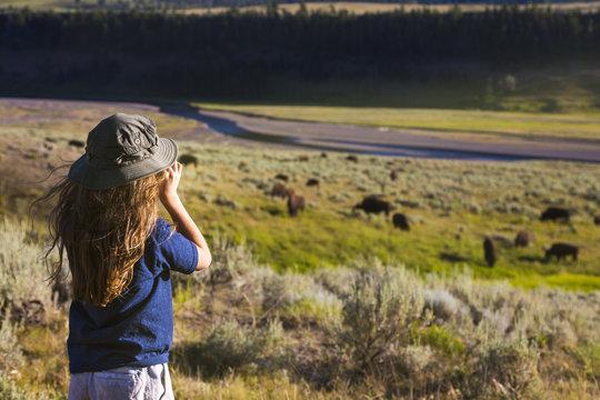 boy looking at buffalo at Yellowstone