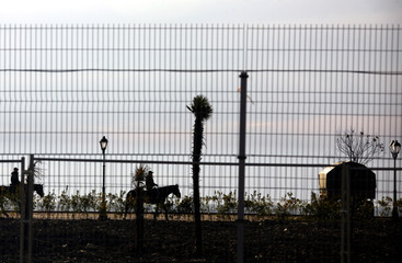 Policemen ride horses behind a perimeter fence in the Olympic Park during the 2014 Sochi Winter Olympics