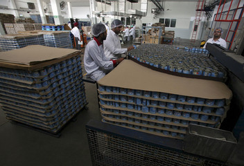 Employees pack tins of sweetened condensed milk inside Nestle's factory in Moga district in the northern state of Punjab, India