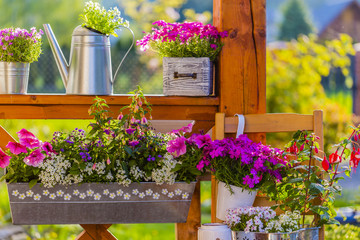 Blooming flowers in the balcony boxes and flowers decoration.