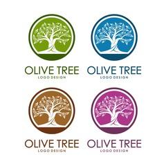 Olive Tree Design Logo Template