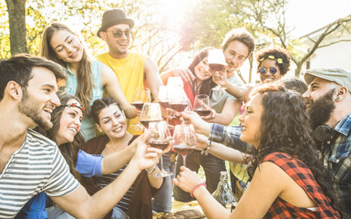 Group of friends toasting red wine having fun outdoor cheering at bbq picnic - Young people enjoying summer time together at lunch garden party - Youth friendship concept - Focus on clinking glasses