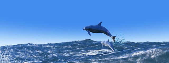 Poster de jardin Dauphin illustration of dolphins jumping in the sea