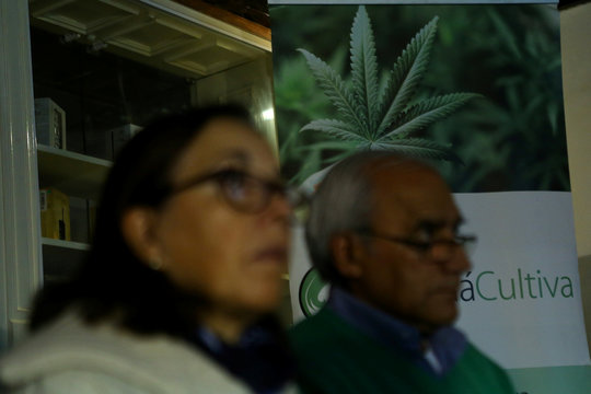 People attend a workshop to learn how to grow an indoor marijuana plant at pro-cannabis Daya Foundation headquarters in Santiago