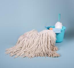 Puli Hund als Wischmop mit Putzeimer