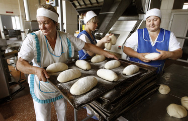 Workers load dough to bake at a local mechanized bakery in the town of Luban